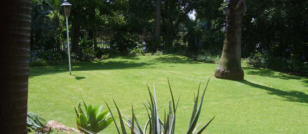 lynwood view bed and breakfast, b&b accommodation in pretoria, lynnwood guest house accommodation, business and travaller accommodation in pretoria